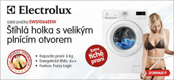Sexistické prasátečko 2013 - Electrolux a LevneElektro.cz
