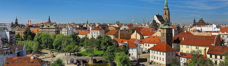 SEO Plzeň